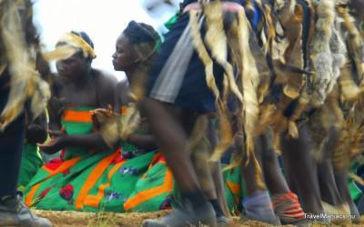 Dansende krijgers op Zambia's Nc'Wala Ceremonie.