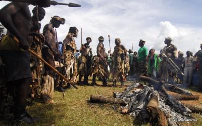 Krijgers BBQen de stier op Zambia's Nc'Wala Ceremonie.