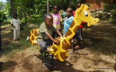 En ook een wip-giraffe is een feit!